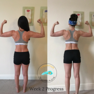 Week 2 Progress Back